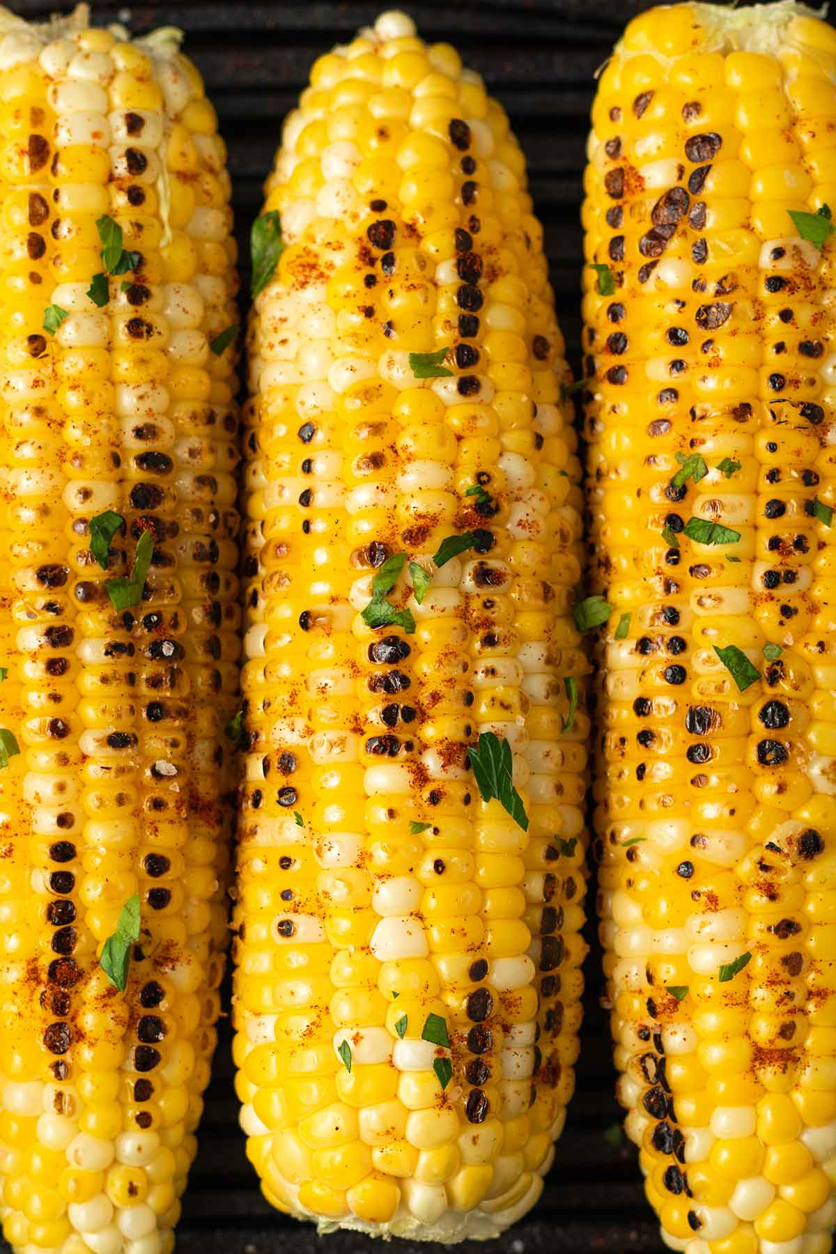 3 ears of grilled corn on the cob next to each other, tipped with salt and parsley.