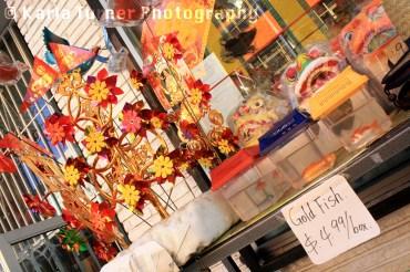 Chinatown_11