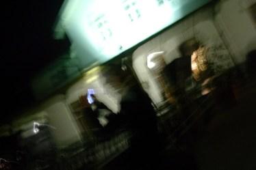 (c) 2008 Karl Baumann: Verschwommen, Photographie mit NIKON SQ, Dürnstein im April