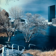 infrared_019