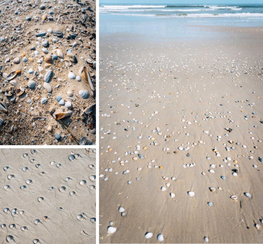 stranden Vlieland