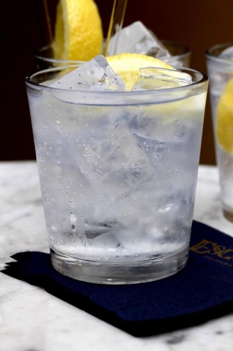 gin och tonic