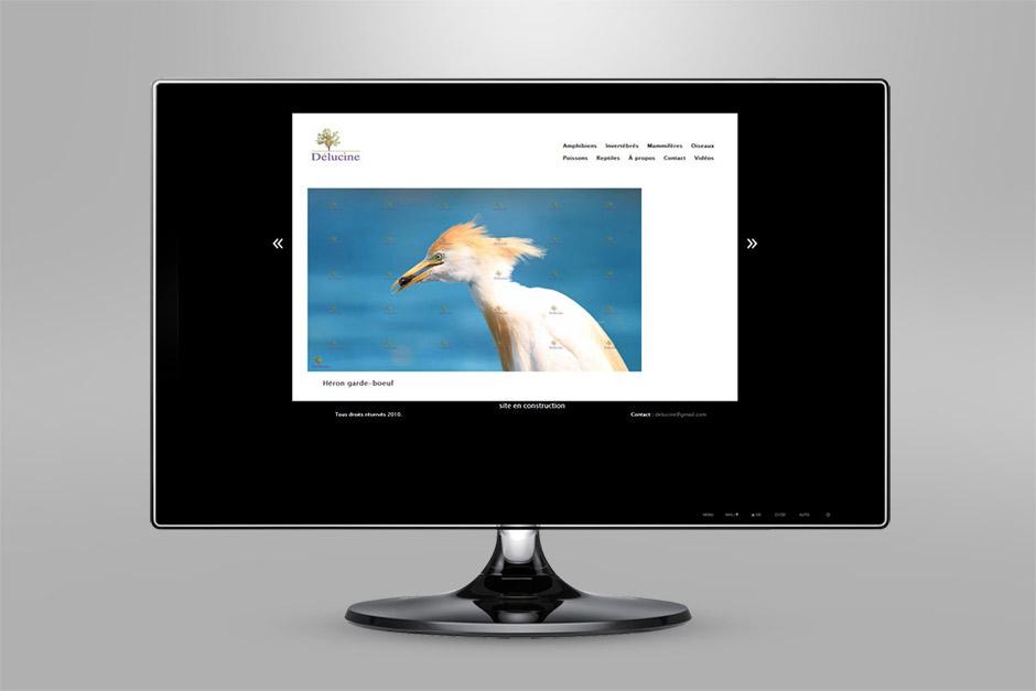 karlxena-site-internet-delucine-2010-heron-garde-boeuf