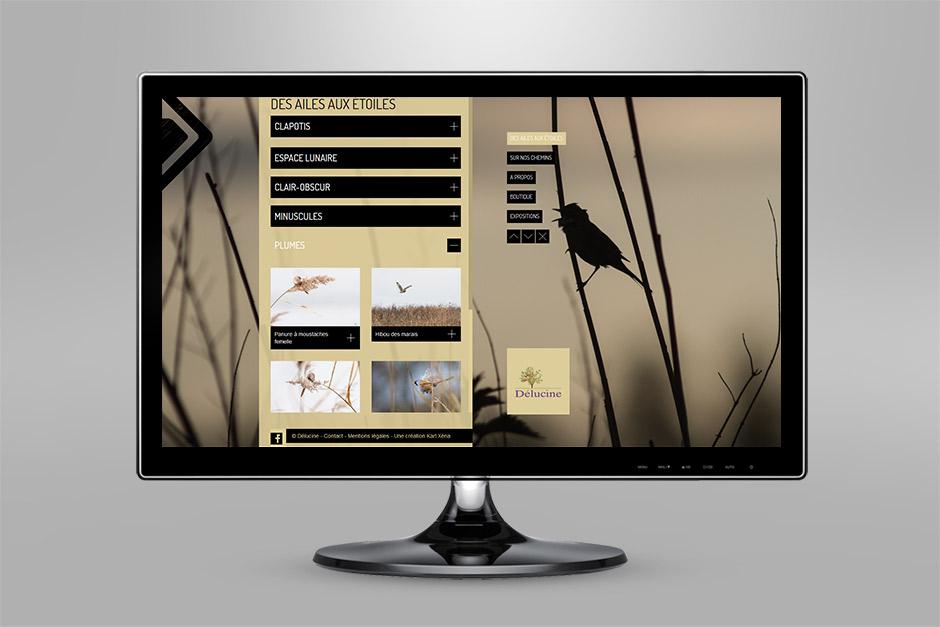 karlxena-site-internet-delucine-2014-des-ailes-aux-etoiles