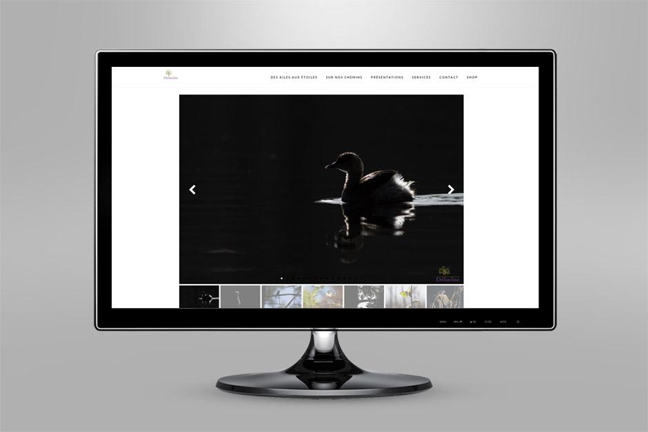 Karl Xéna - site internet - Délucine - 2015