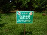 In Lalbagh park in Bangalore.... NO GAMES.