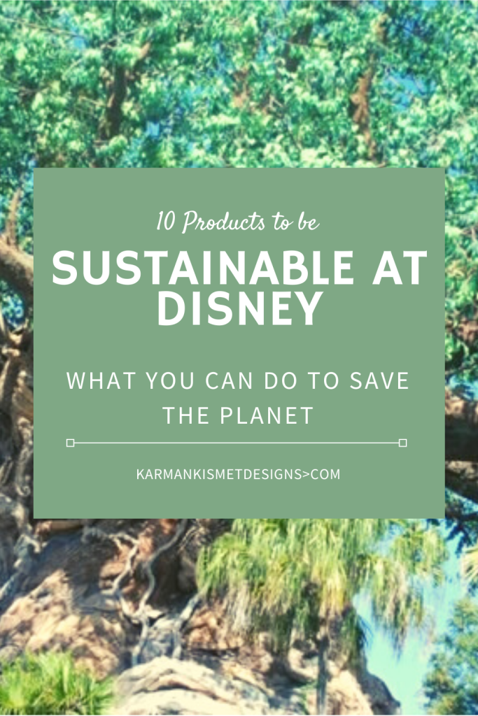 Sustainability in Disney