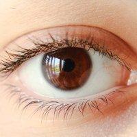 Ewangelia o przywróceniu ślepcowi wzroku lub o prawdzie w czasach zarazy