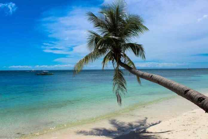 Bohol by Rob & Nat from Love and Road