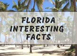 Interesting Florida facts