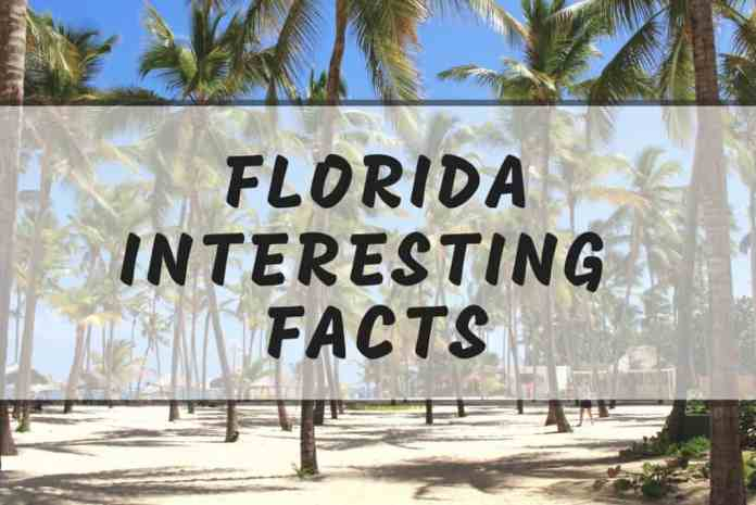 Interesting Florida facts