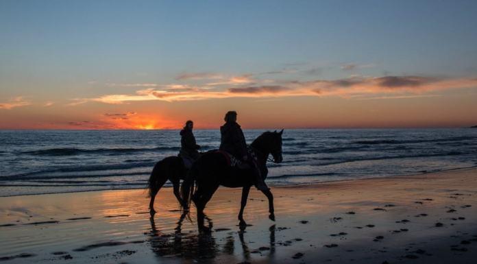 sunset beach new zealand honeymoon packages