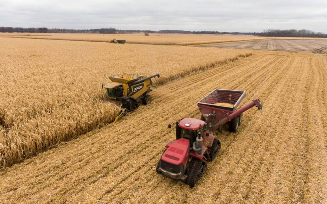 Egyre kevesebb a mezőgazdasági termelés