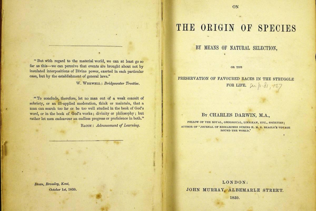 Darwin A fajok eredete