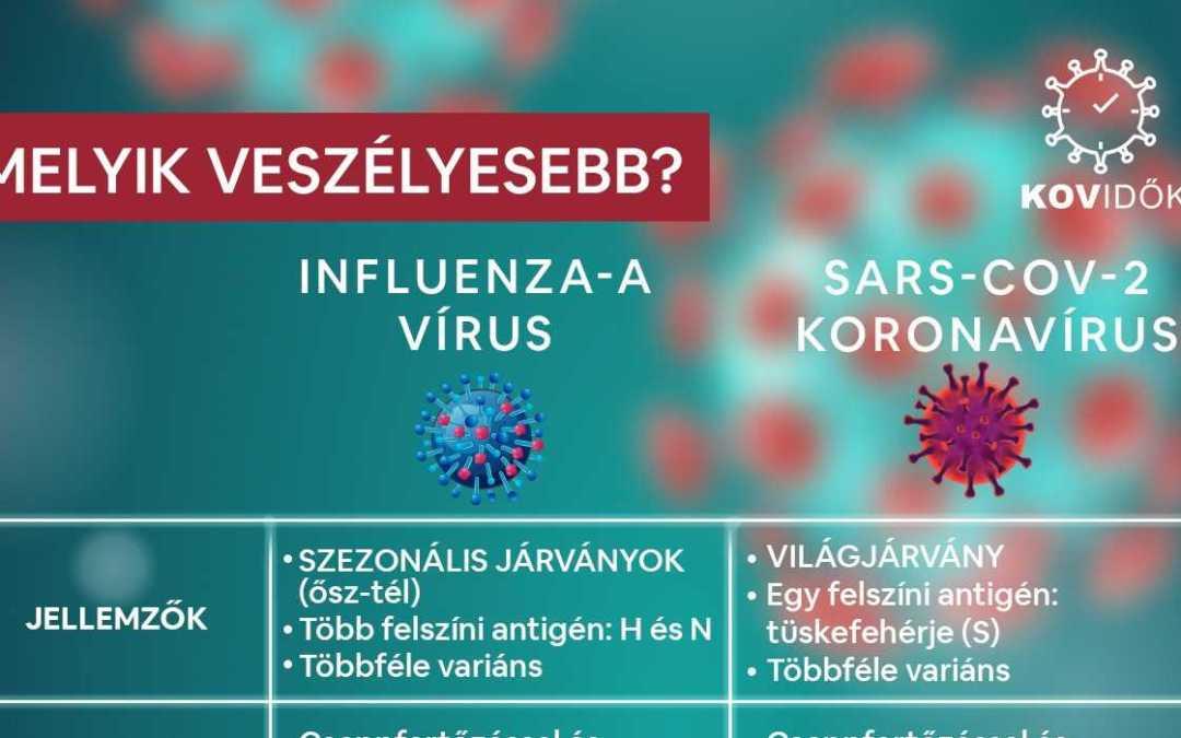 Veszélyesebb-e az influenza a koronavírusnál?
