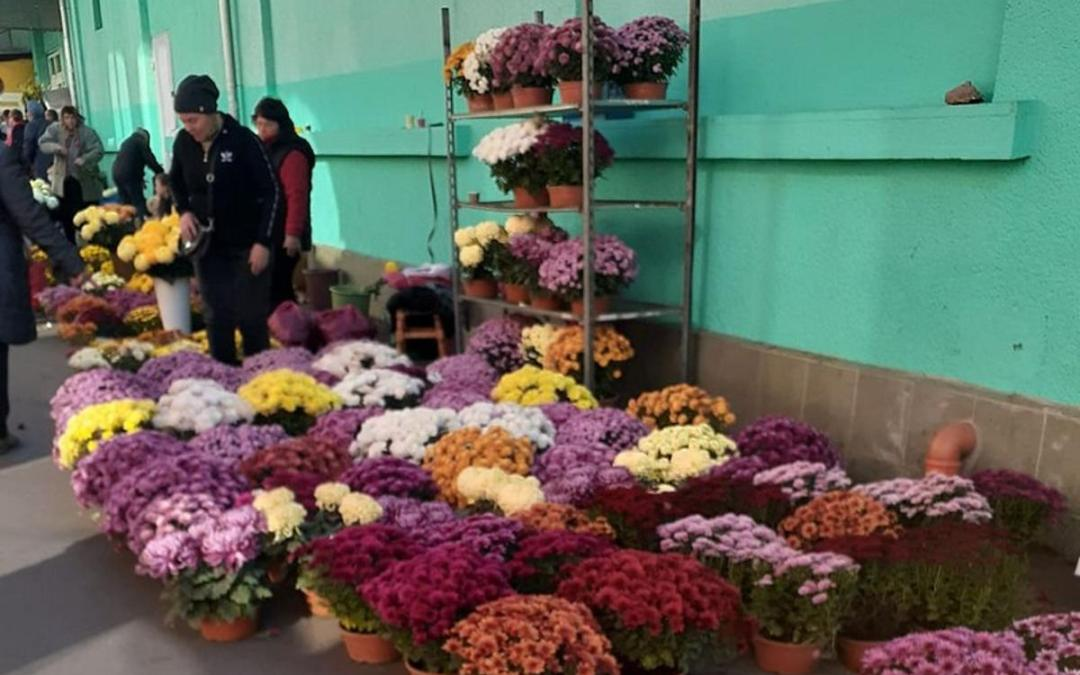 Mennyibe kerül a virág és a mécses mindenszentek előtt?