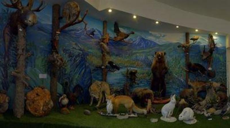Животный мир района