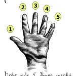 Gesetz der Hand (c) Sylvia Nickel | 2nc.de