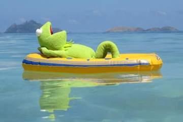 Kermit_Hero KarryOn