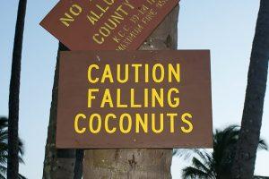 falling-cocnuts-karryon