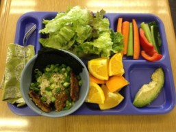 healthy-school-lunch_1