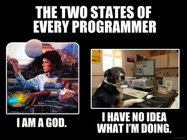 Los dos estados por los que pasa todo programador