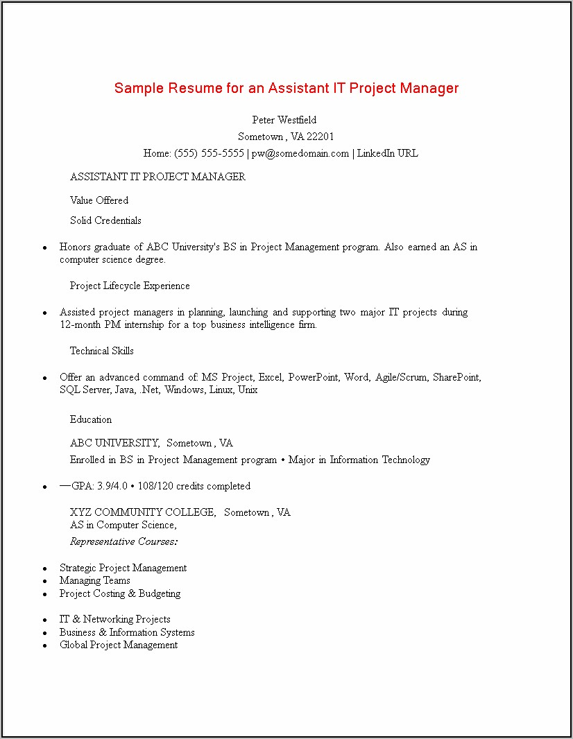 Project Manager Resume Template Doc