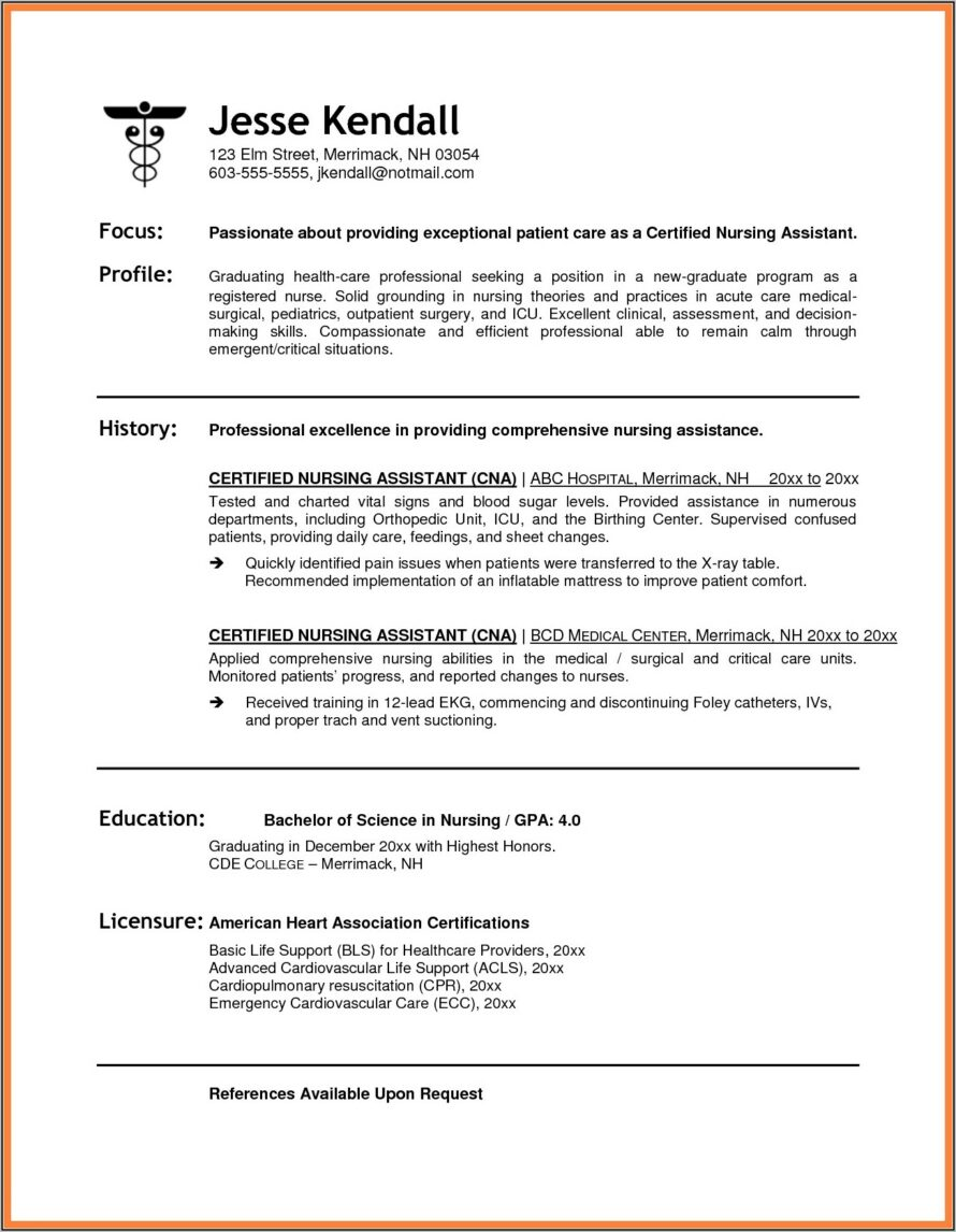 Resume Samples For Professionals