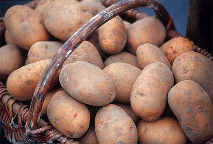Сажать картошку во сне толкования на основе деталей сновидения