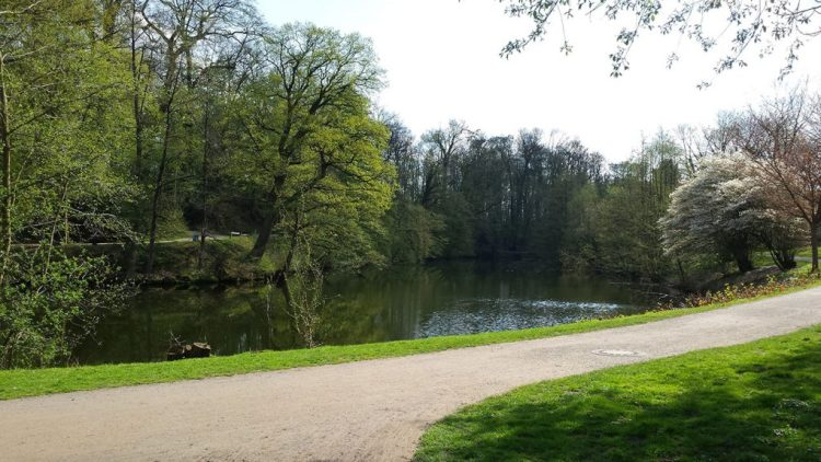 Überwasserfriedhof de Münster