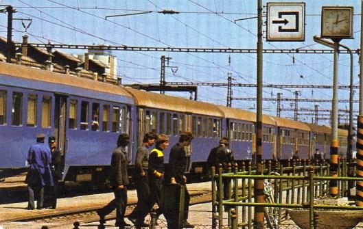 MÁV - 1981