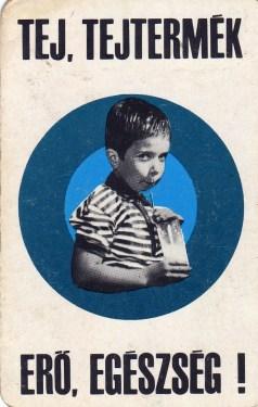 Tej, tejtermék - 1971