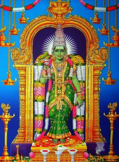 madurai-meenakshi-devi-image_1