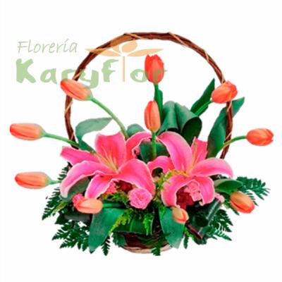 Canasta de Tulipanes Promocion