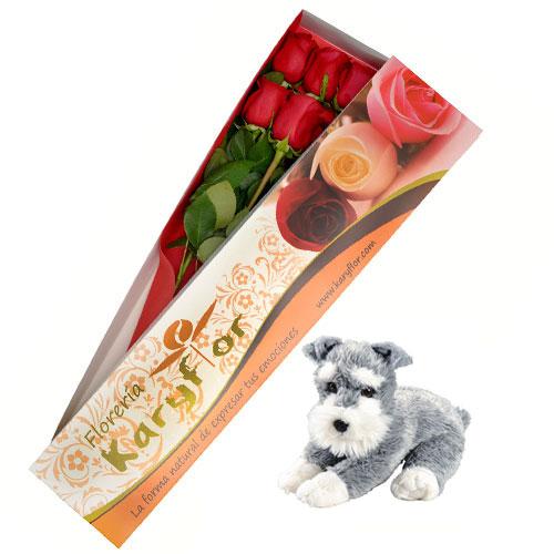 Caja de 6 Rosas con Peluche Perrito (según stock, variedad de peluches) incluye tarjeta dedicatoria y preservante. Pueden adicionar Chocolates y más, ingresando a la opción REGALOS en la parte superior de la Pág. web.