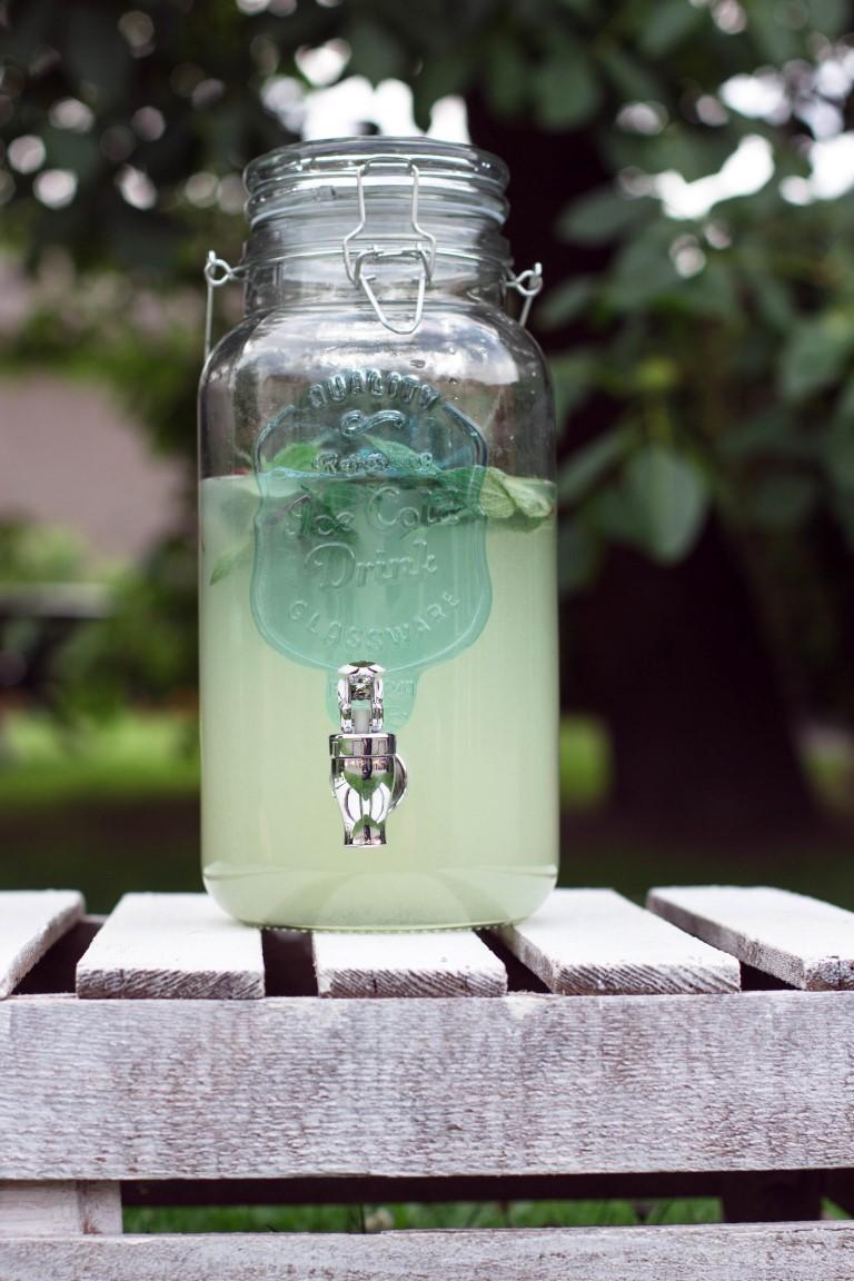 Zitronen-Limonade-38