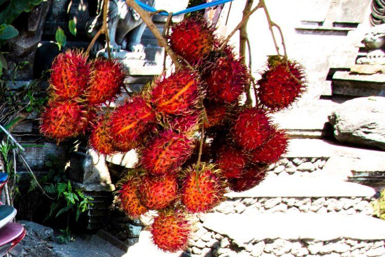Rambutan-Exotische-Früchte-in-Thailand-18-Sorten-die-man-probieren-muss-11