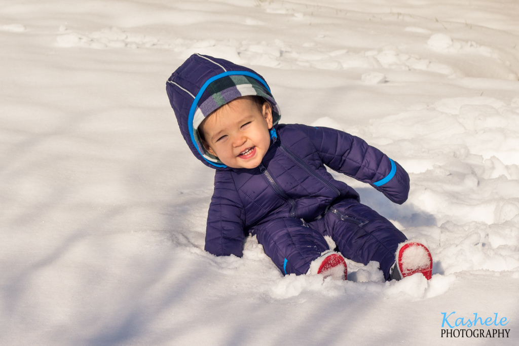 Image for Little Boy in the Snow