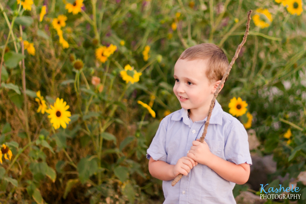 Image of the Hardy Family little boy with sunflowers