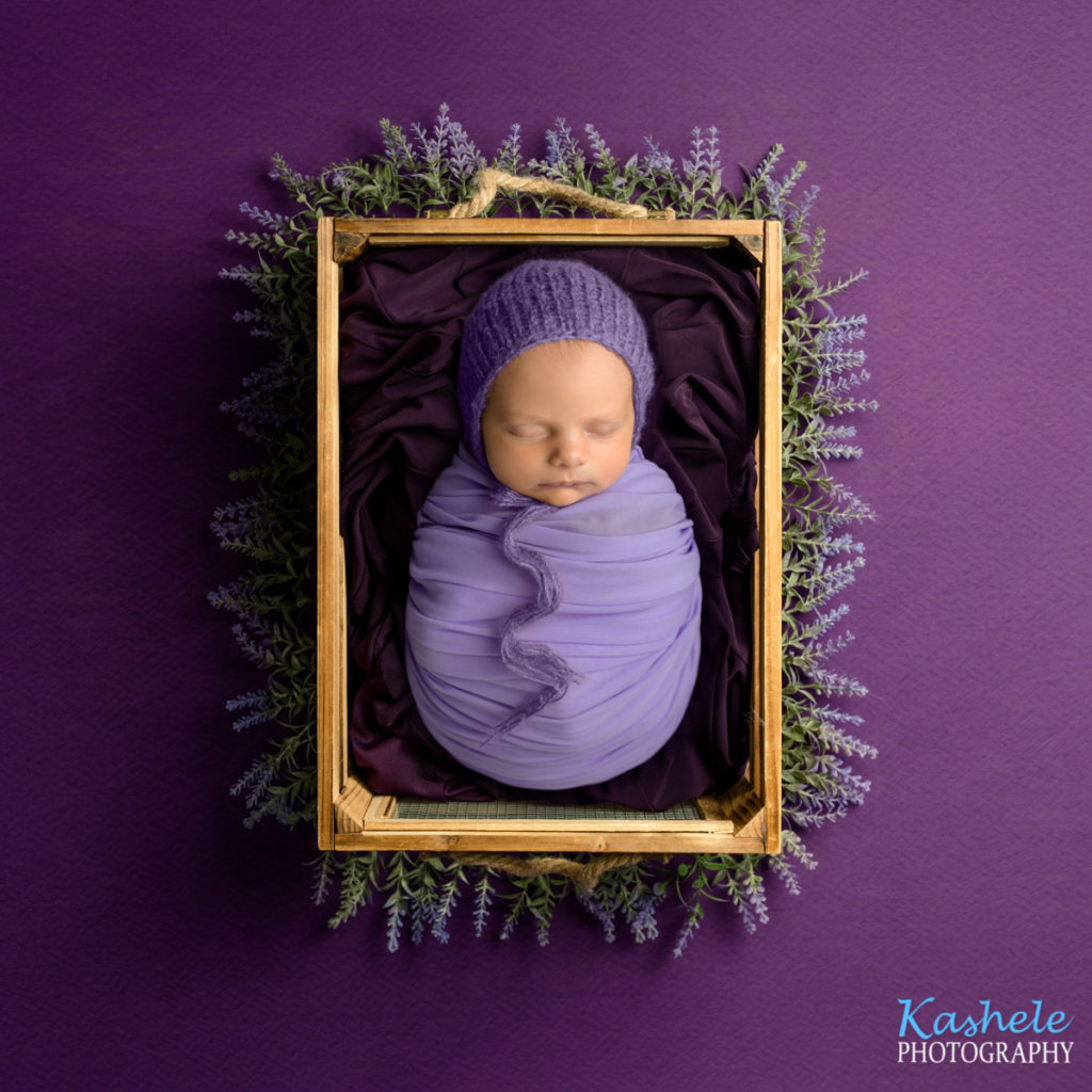 Baby in crate with lavendar for Logan Newborn Photographer post