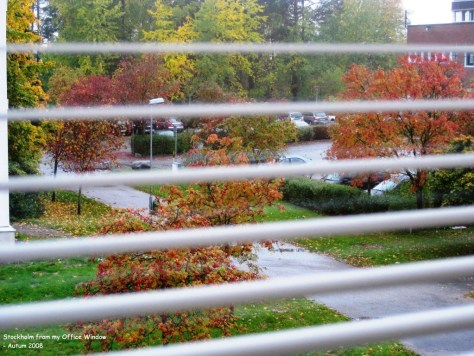 Stockholm Autumn from my office window