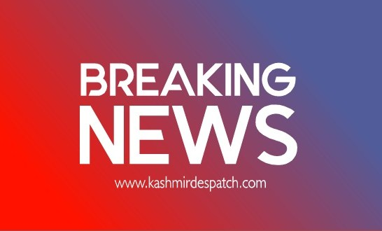 Sale of Air Tickets on Exorbitant Rates: Crime Branch Kashmir Searches Premises Of Several Travel Agencies