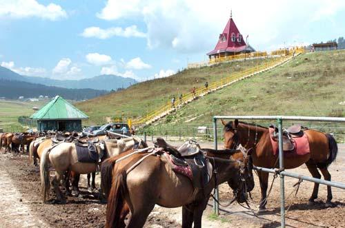 history-horses-gulmarg-polo-pic-bilal-bahadur-654646