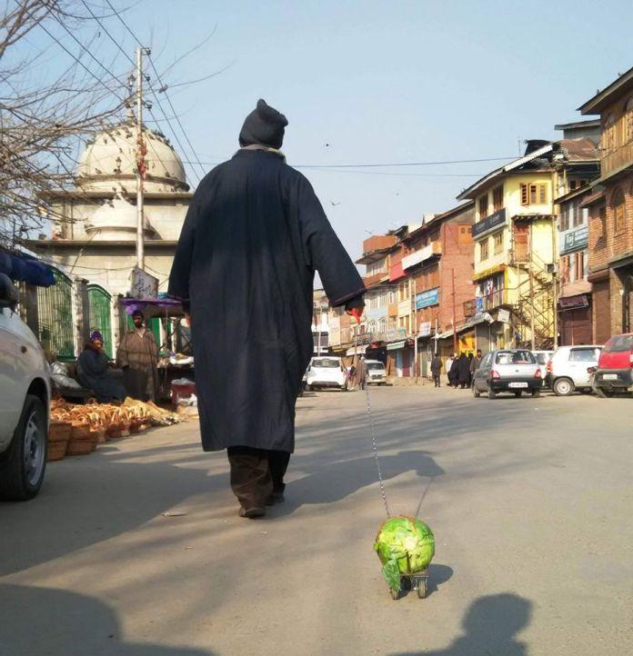 'Cabbage Walk' Artist 1