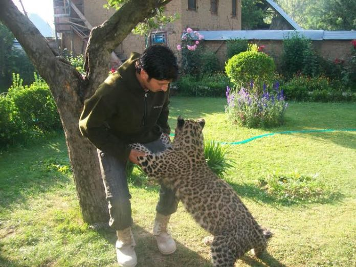 Cub in Kulgam Raised for One and a Half Year