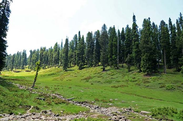Bajpathri