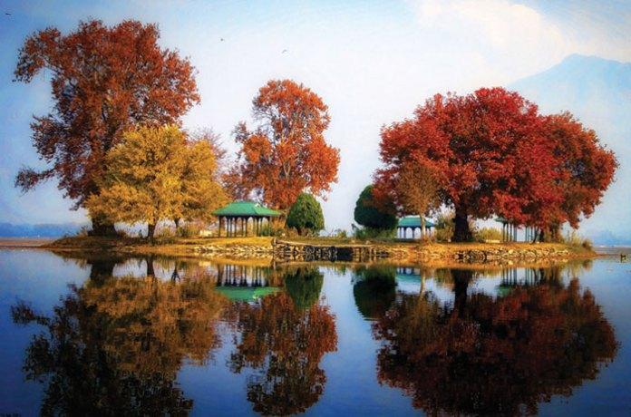 Char-Chinar-Rof-e-Lank-Dal-Lake-near-Hazratbal-Shrine