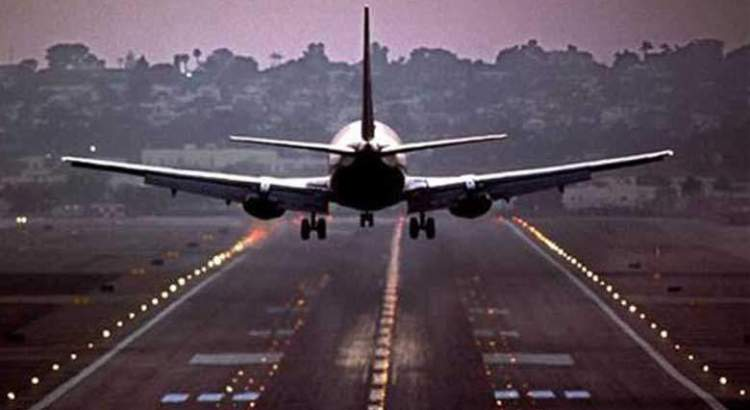 Flights disrupted as cow enters Ahmedabad airport