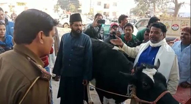 Muslim corporator in UP hands over cow to police