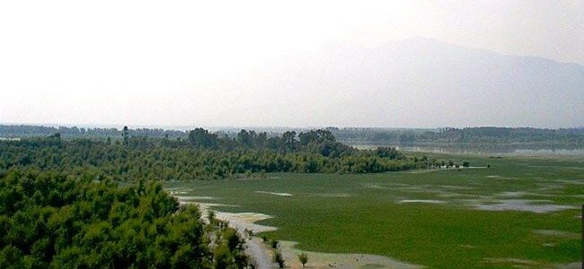 43.6 hectares of Wullar lake under encroachment: Govt